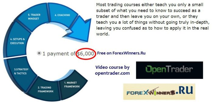 Professional Training Program - OpenTrader Download