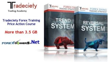 Pro Tradeciety - Forex Trading Academy Price Action Course Download For Free